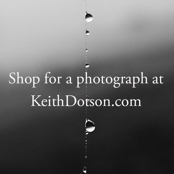 ad-image