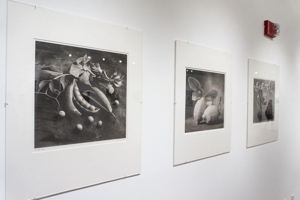 Platinum/alladium prints by Cy DeCosse, i nthe Constellation exhibition at Baldwin Gallery