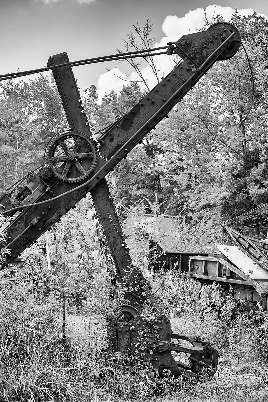 Vines and weeds slowly overtake the bucket of a rusty, abandoned steam shovel.