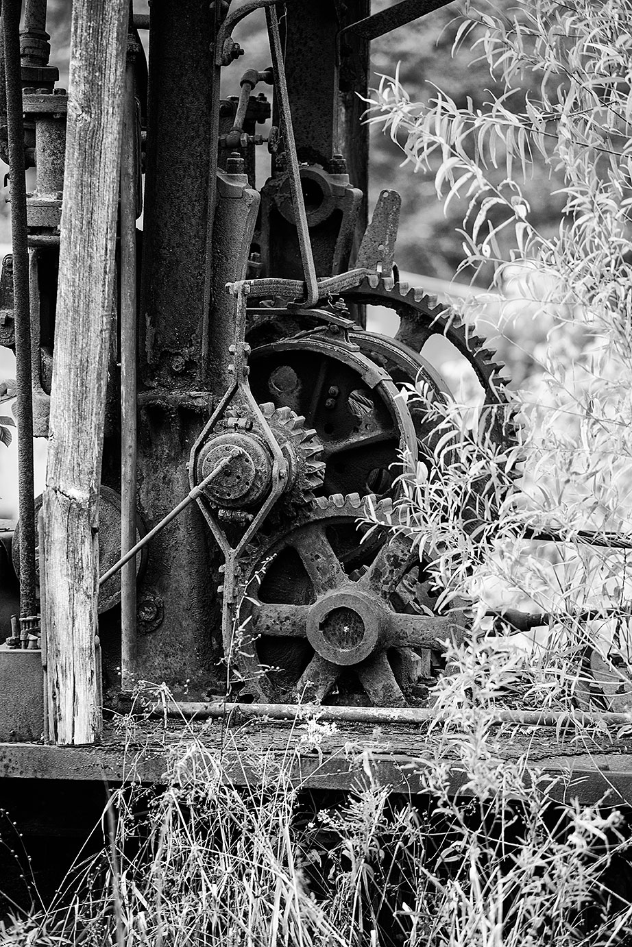 A detail photograph of a set of rusty gears and weathered wood among the tall weeds.