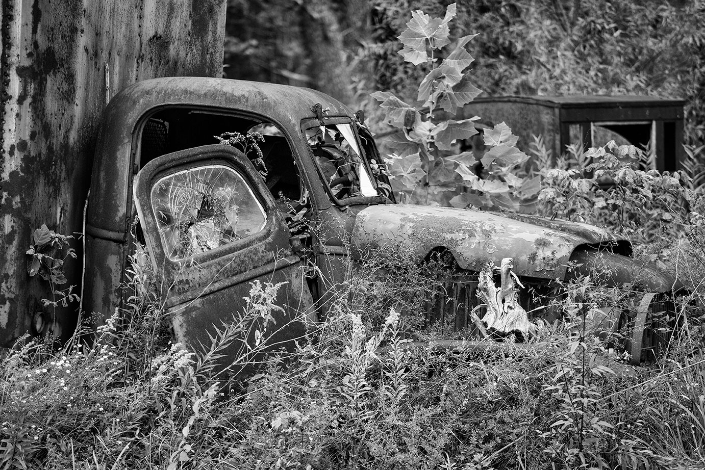 A rusty gem collapsing among the overgrown grass and weeds.