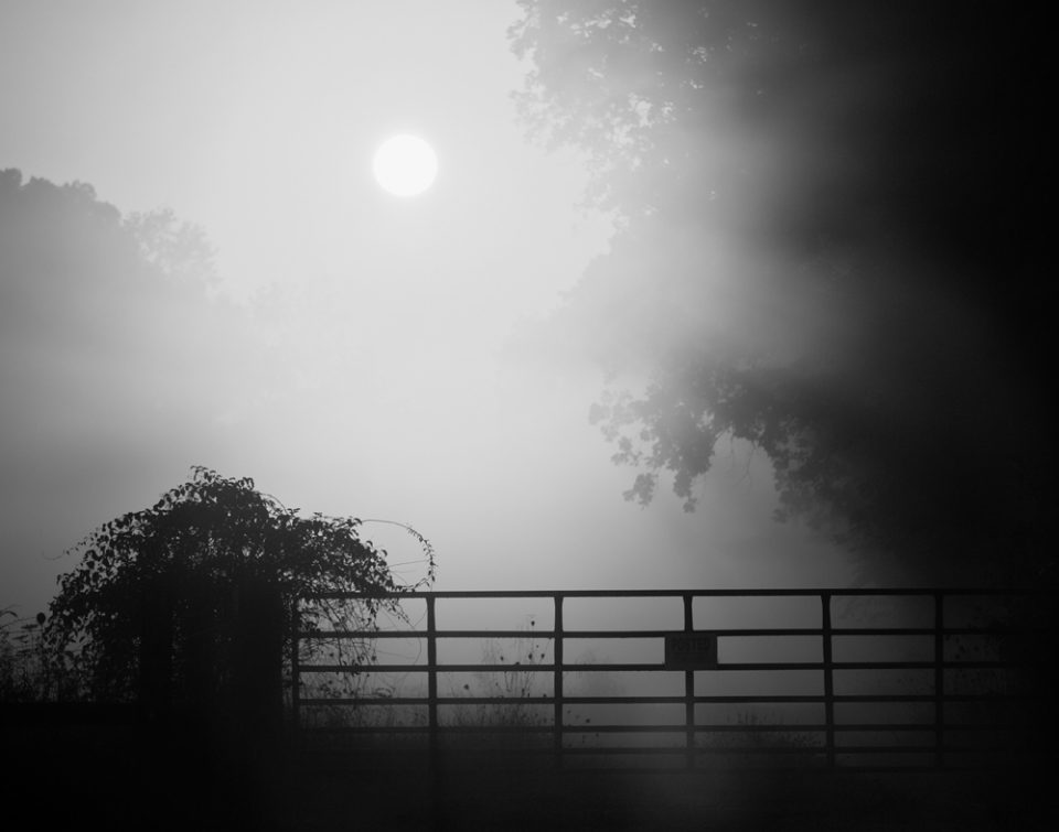 Foggy Country Sunrise (IMG_5048) black and white landscape photograph by Keith Dotson.