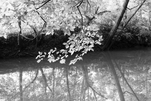 Spring Creek, black and white photograph by Keith Dotson