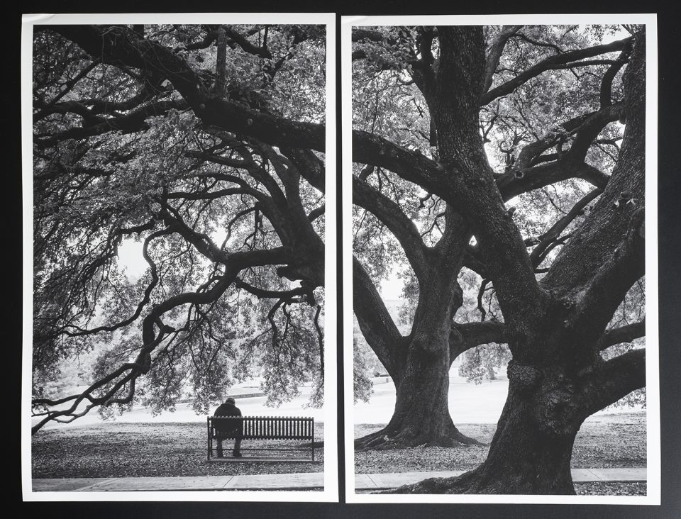 Photograph of two artist proof prints made for an interior design project. Click to buy the prints.