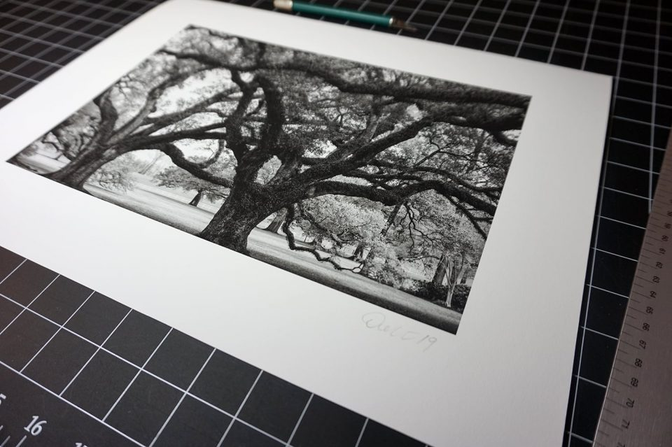 Black and white print of a photograph  by Keith Dotson Photography. Click the photograph to buy a print.