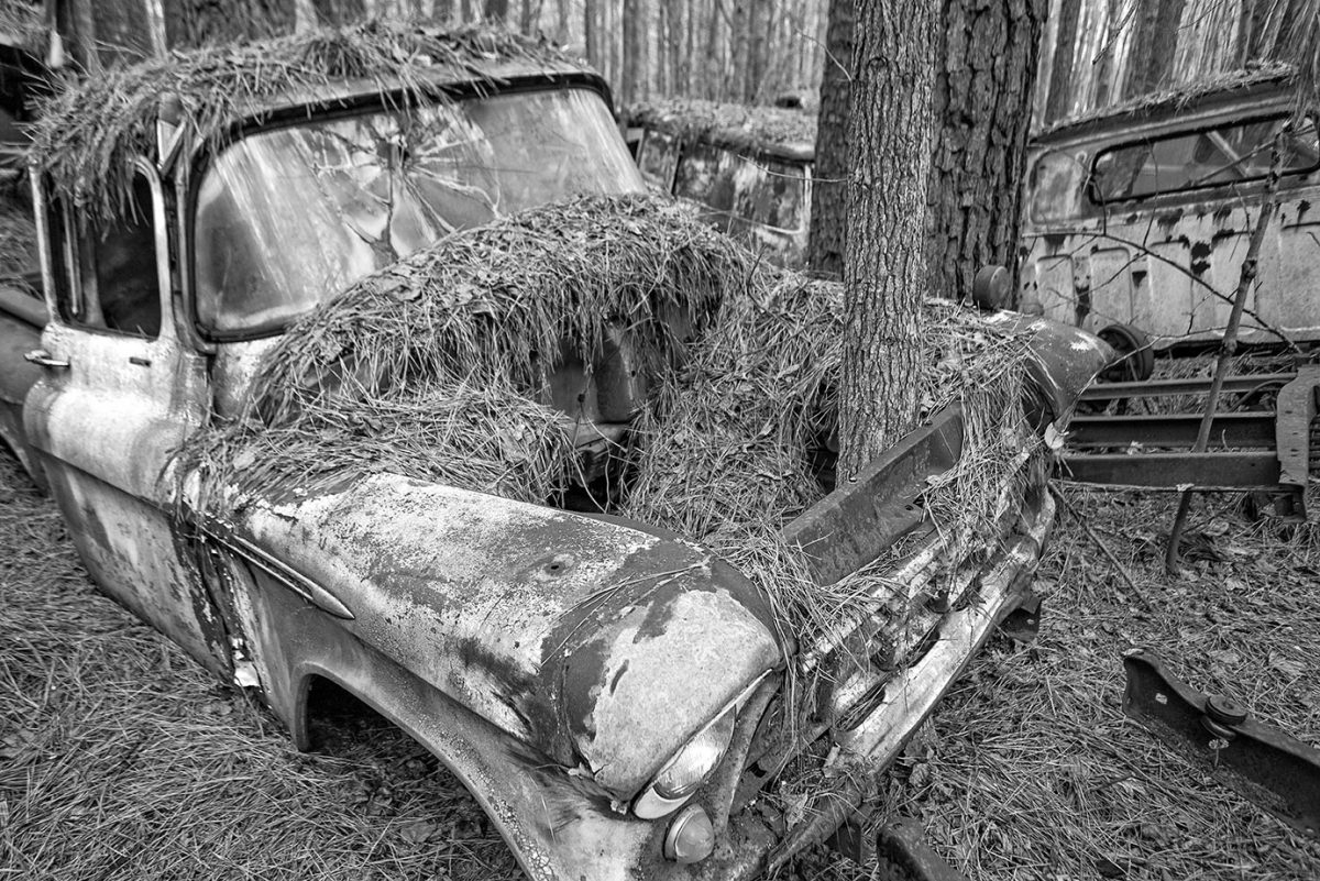 Black and white photograph of an old truck with trees growing through the engine compartment. Taken by Keith Dotson.