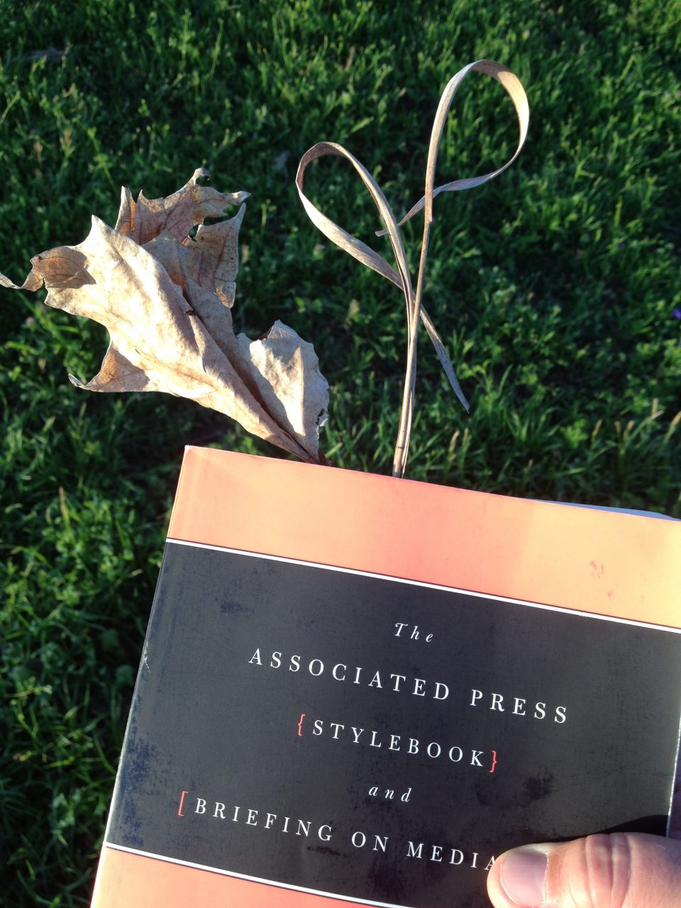 I use this out-of-date AP stylebook that would have been recycled to hold fragile leaves.