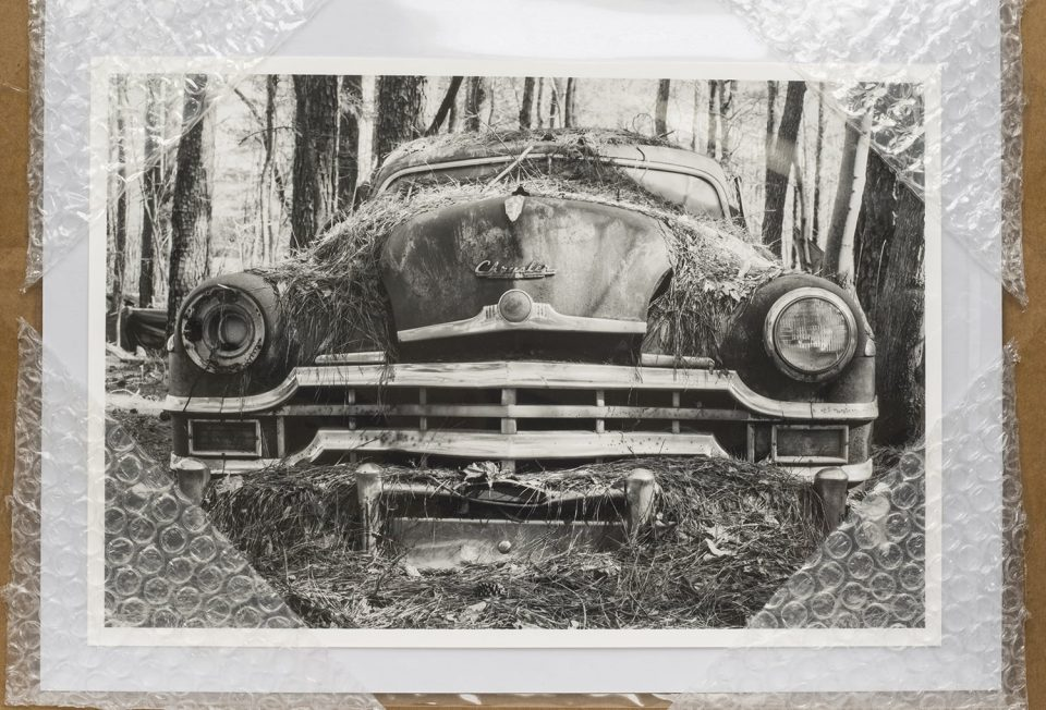 "Artist proof: ""Pride and Joy"" by Keith Dotson. Selenium toned black and white silver gelatin print."