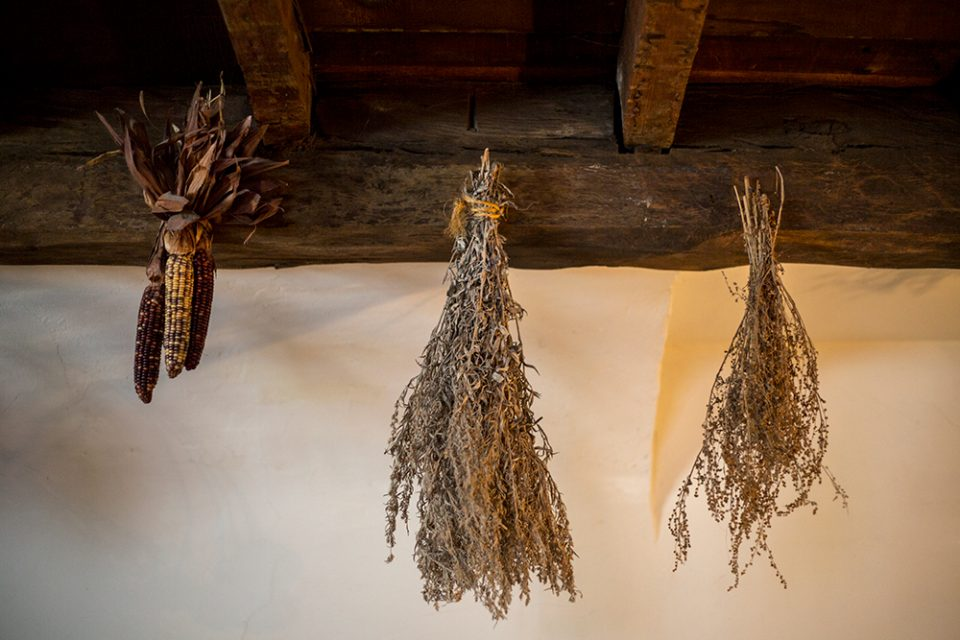 Dried herbs hanging from the timber rafters inside the Corwin House, also known as the Witch House.