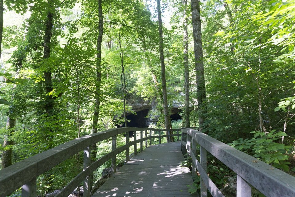 View of Russell Cave from the boardwalk. The walk to the cave is short -- less than a quarter mile. But the cave itself is not accessible.