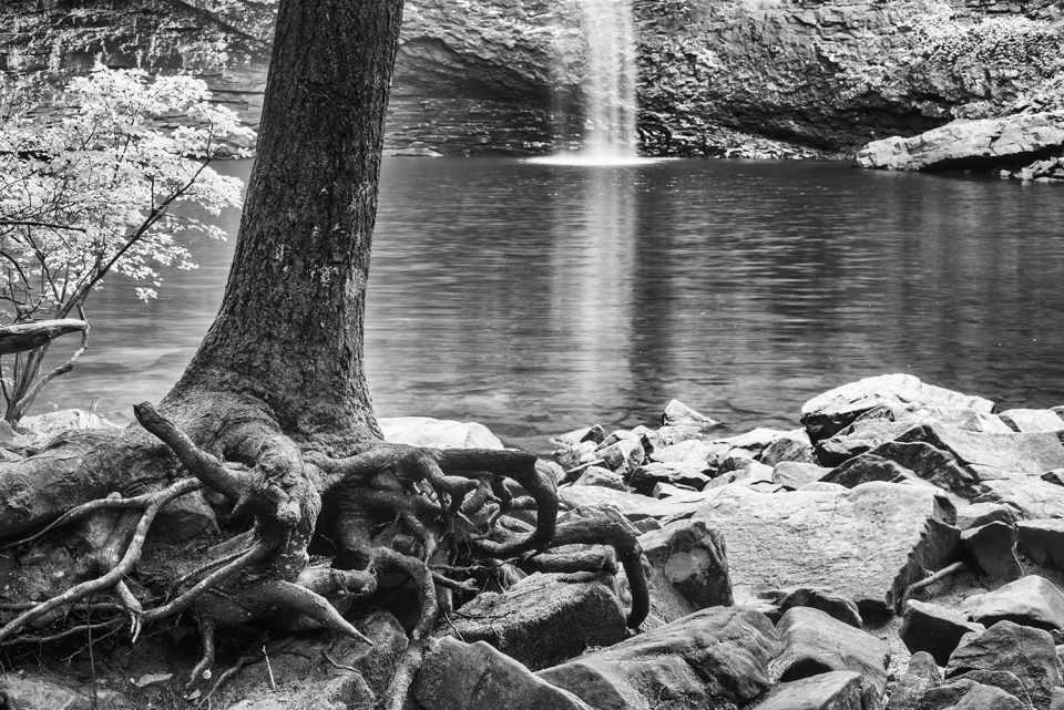Roots, rocks, and a waterfall. Black and white landscape photograph by Keith Dotson.