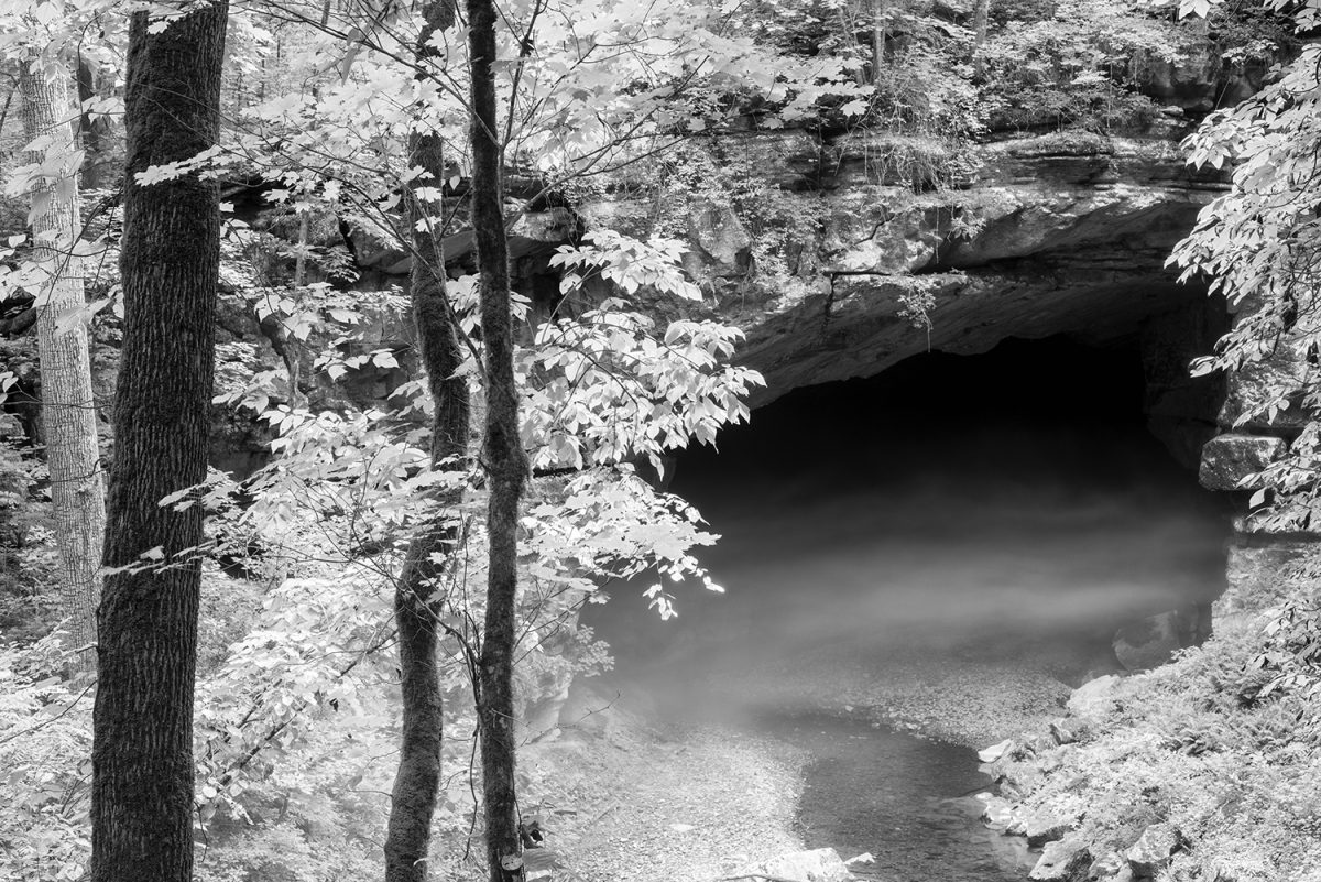 black and white photograph of fog drifting from the mouth of a large cave in the forest