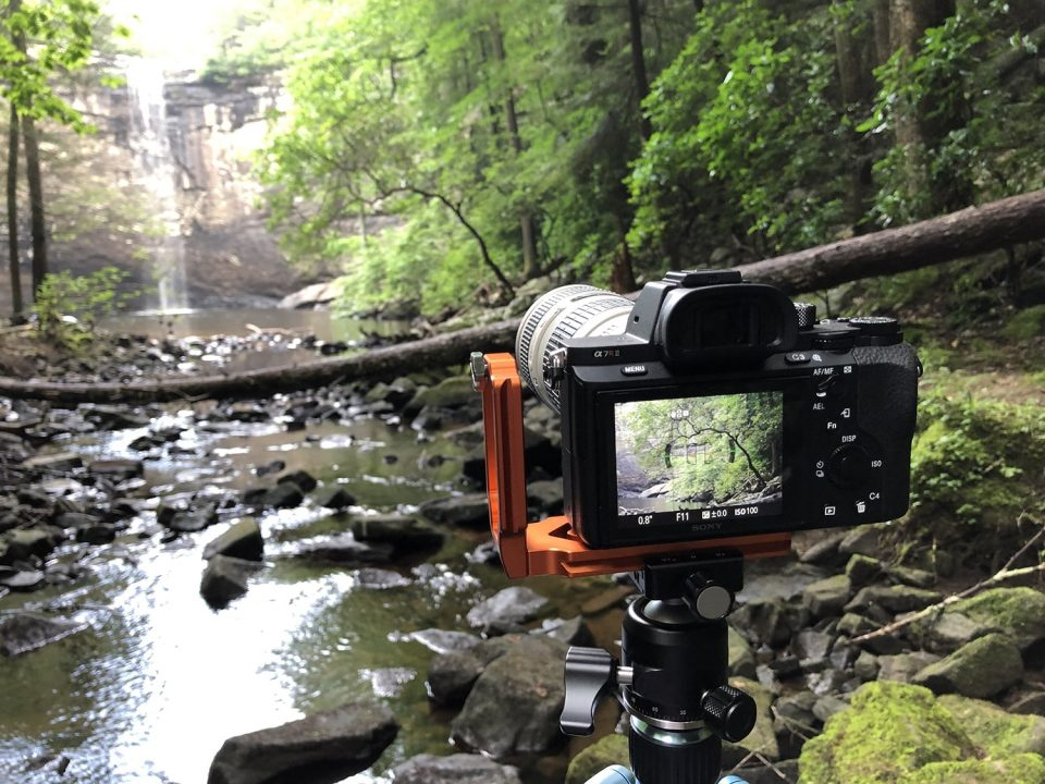 Photographing a tree on the side of the stream at the base of the waterfall.