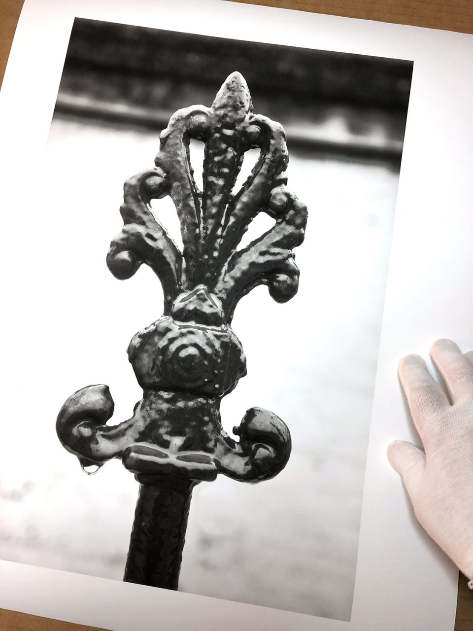 Black and white photograph of a rain soaked iron fence picket found in Savannah's historic district. It features a common Savannah motif -- the palm leaf. Buy a print here.