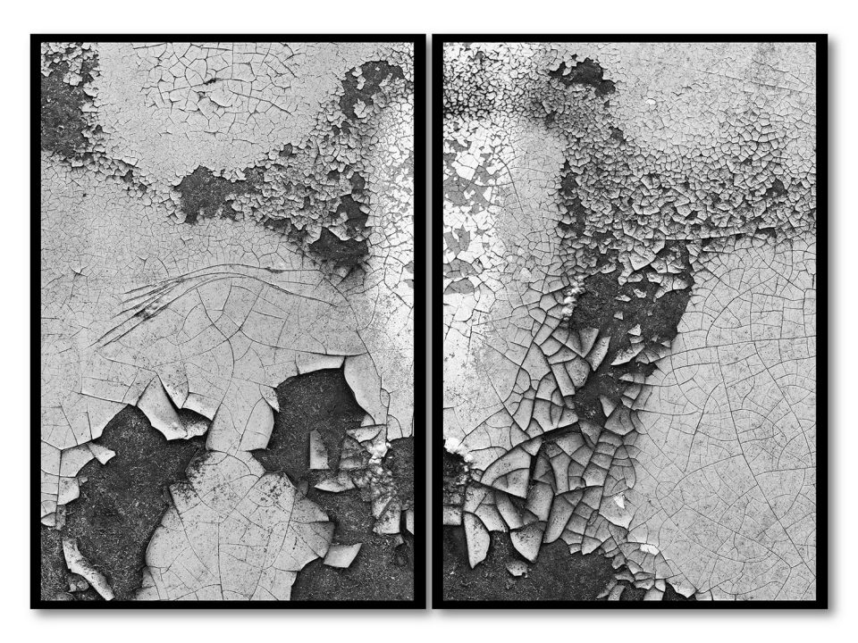 A diptych of abstract photographs shot on the side of a rusty old car