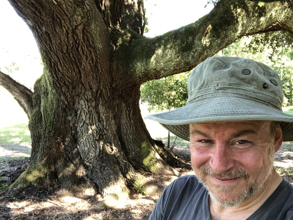 A rare selfie, but really, the star of this giant old tree, which has been around since the Civil War