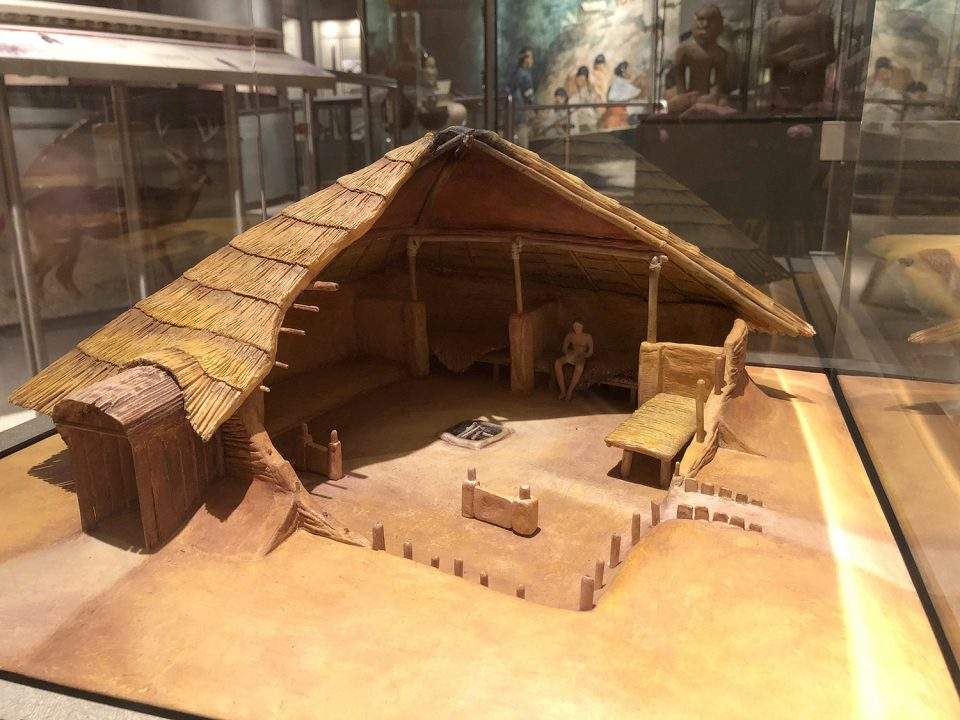 A model cross-section of what a Mississippian era home may have looked like. Seen at the McClung Museum of Natural History and Culture at University of Tennessee, Knoxville.