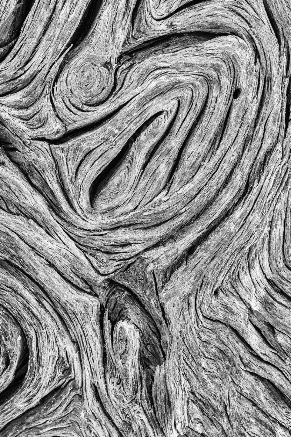 Driftwood texture in black and white by fine art photographer Keith Dotson.