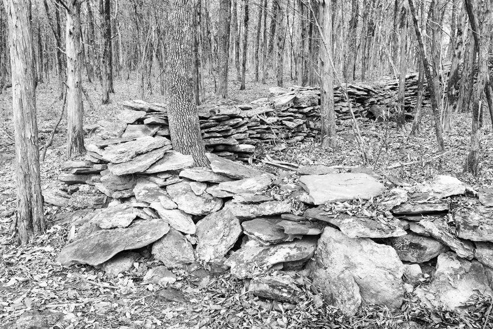 Old Stone Wall in the Forest - Black and White Photograph by Keith Dotson. Click to buy a fine art print.
