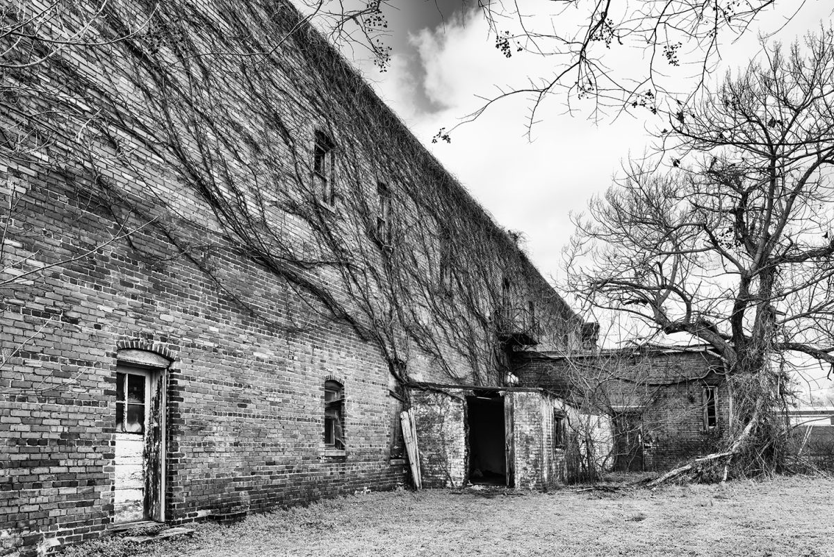 Black and white photograph of an abandoned building with ivy on its walls in Anniston Alabama by Keith Dotson