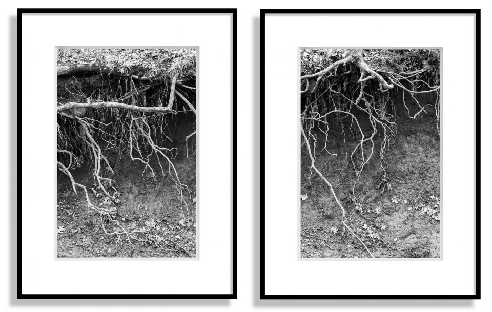 Two framed photographs by Keith Dotson
