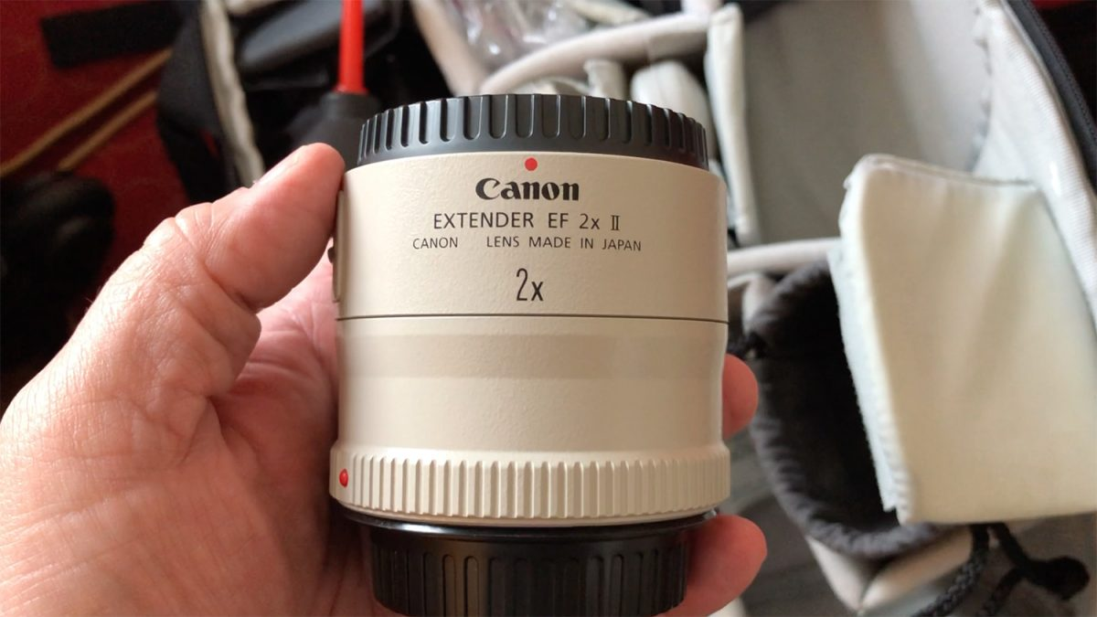 Using Canon Externder EF 2X II on a Sony Camera with a Sigma MC-11 adapter