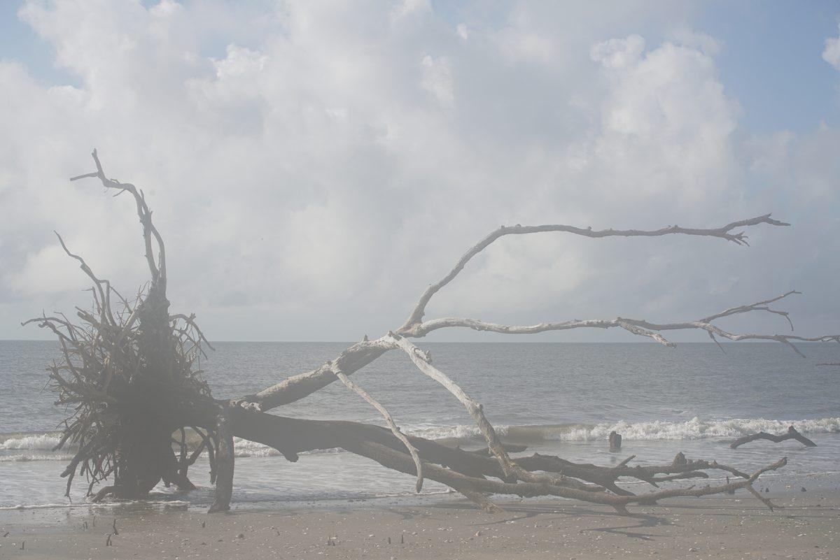 A beach scene photographed through a lens foggy with condensation. Copyright Keith Dotson.