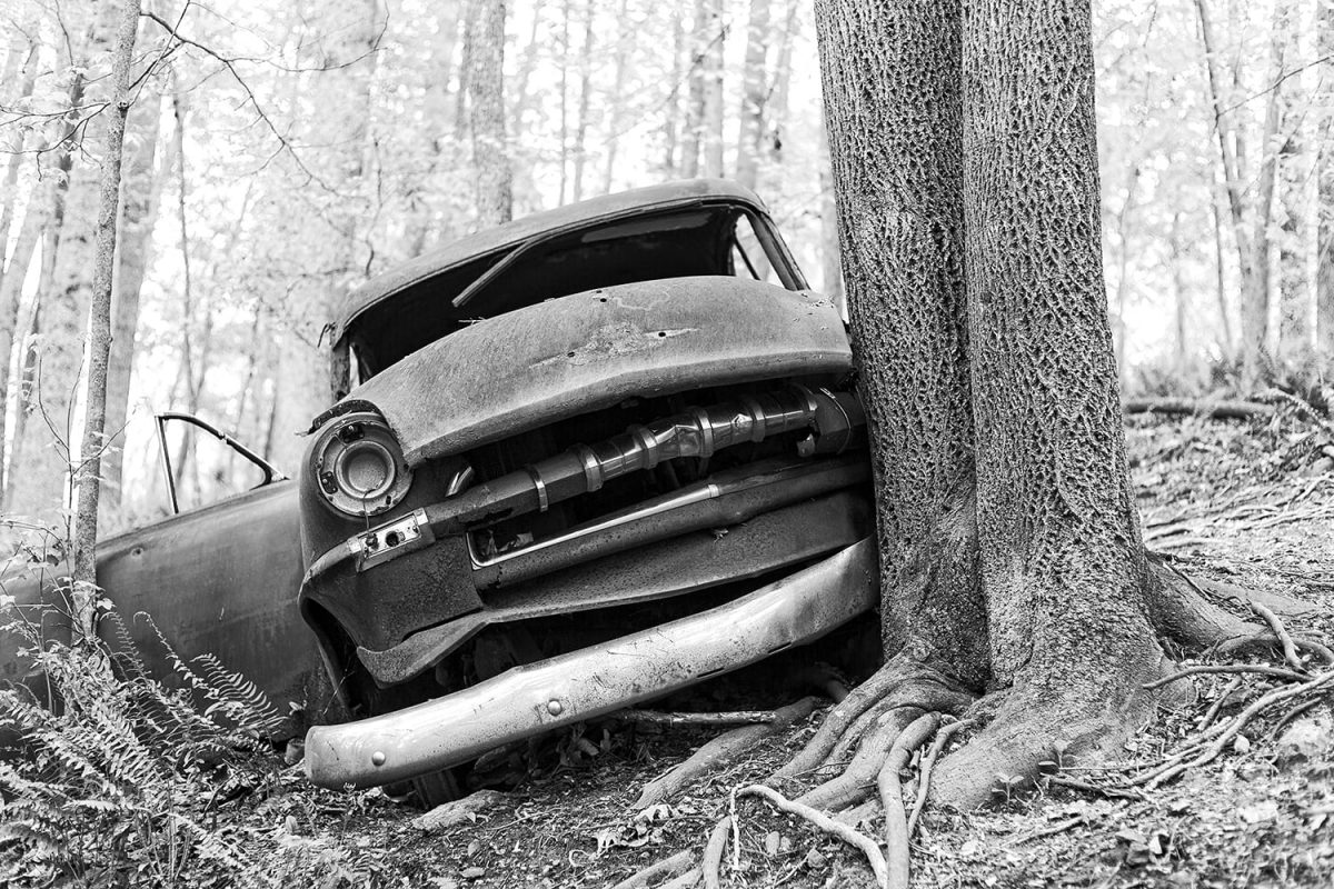 Black and white photograph of an old car crashed into a tree in the forest
