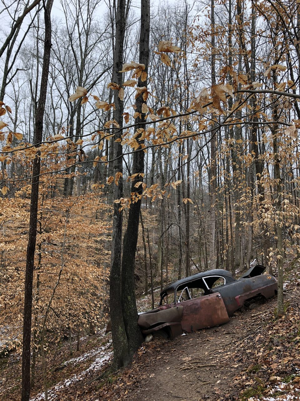 A crashed and abandoned 1953 Plymouth Cranbrook. Watch the video to learn a little more about this old crash site.