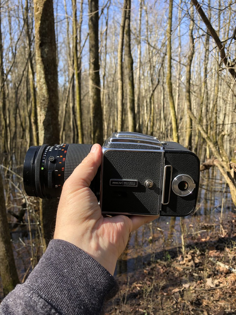 For this hike, I pulled out the Hasselblad 503CM.