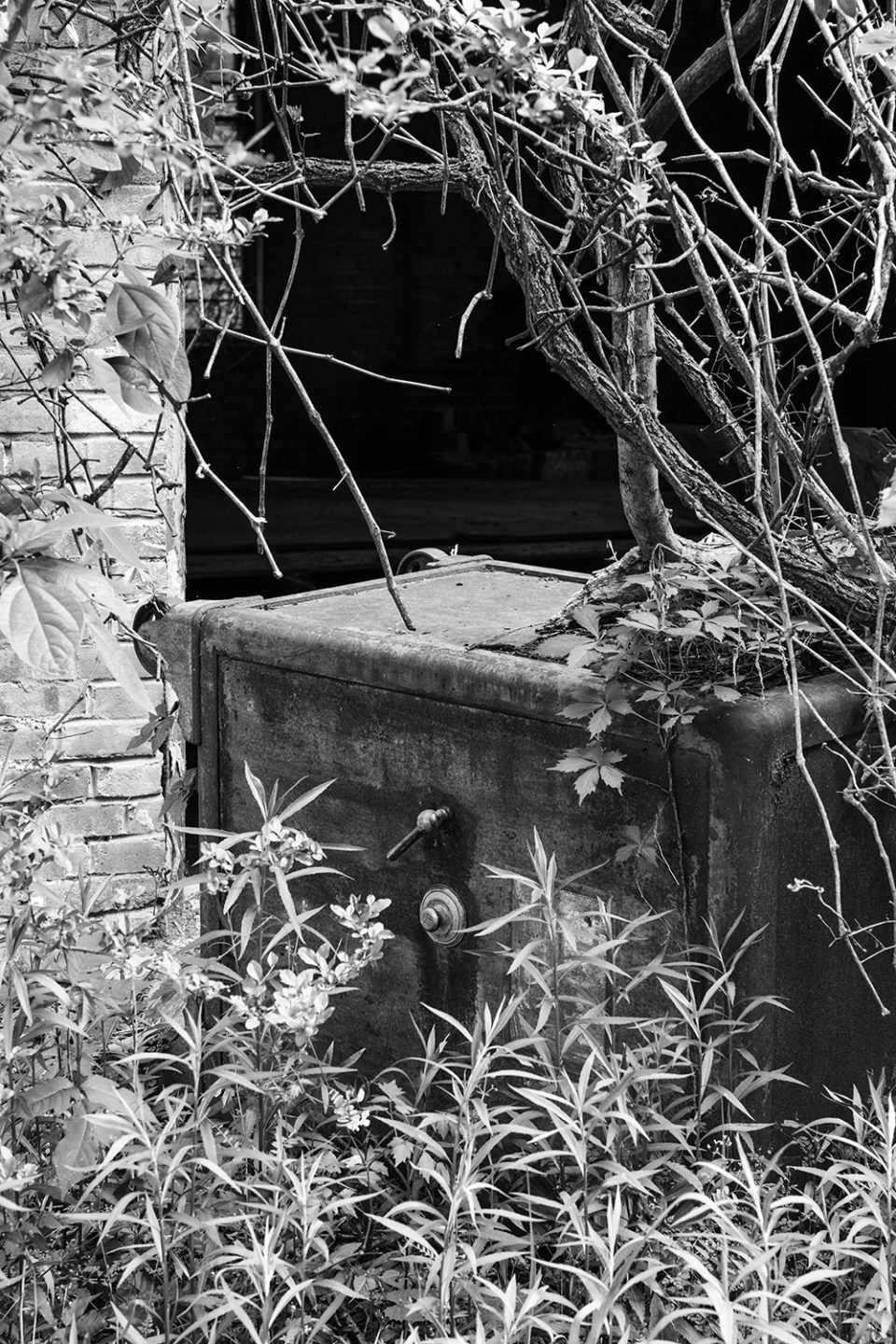 Black and white photograph of the antique Mosler safe found lying in the tall weeds next to the R.C. Tibbs & Sons building in Hushpuckena, Mississippi.