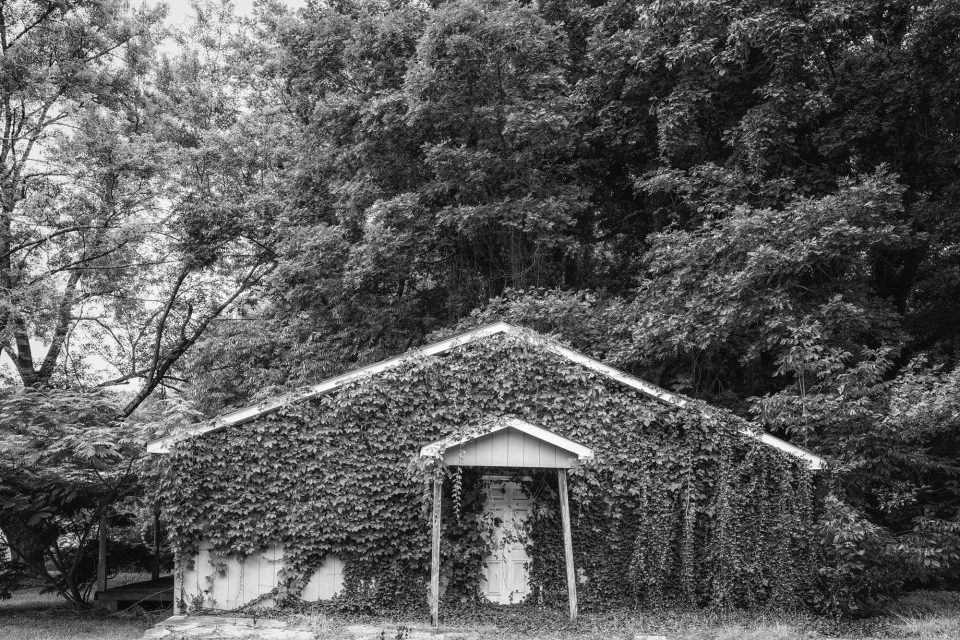 Ivy-covered house discovered on the way to the waterfalls. Black and white photograph by Keith Dotson. Buy a fine art print.