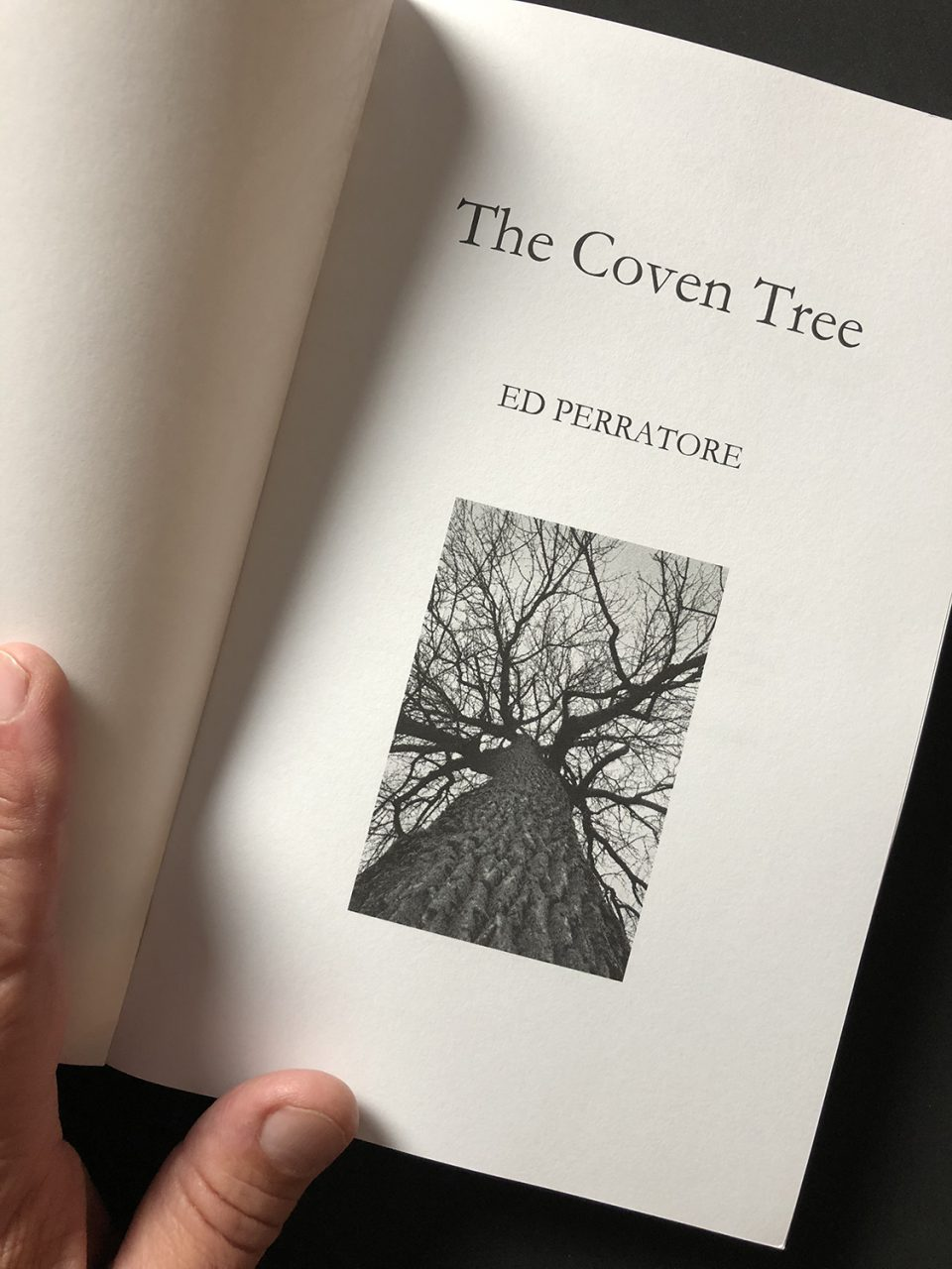 Title page of The Coven Tree, with my photograph of a barren cottonwood tree in winter.